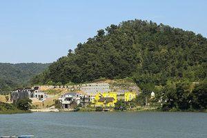 Thanh tra toàn diện việc quản lý, sử dụng đất rừng ở huyện Sóc Sơn: Báo cáo Thủ tướng trước ngày 1/2/2019