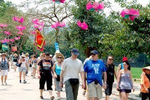 Việt Nam đón hơn 14,1 triệu lượt khách quốc tế trong 11 tháng