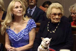 Công chúa Hawaii ủy thác 40 triệu USD và chó Chihuahua cho vợ
