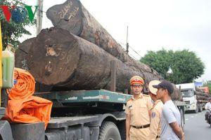 Phát hiện 4 xe container chở hàng chục cây gỗ tròn 'khủng'
