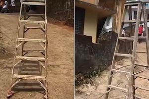 Chiếc thang 'biết đi' ở Ấn Độ, dân làng nghi do linh hồn điều khiển