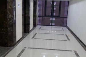 Ông chủ Lạc Hồng Lotus N01T5 lên tiếng việc bị tố 'bớt' thang máy