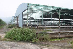 Cận cảnh trại nuôi bò ngàn tỉ 'bỏ hoang' có liên quan đến ông Trần Bắc Hà