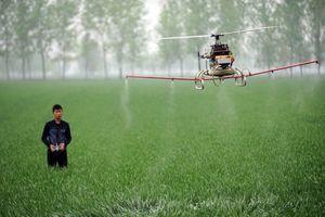 Hành động bất ngờ của anh nông dân khi thấy flycam trên cánh đồng