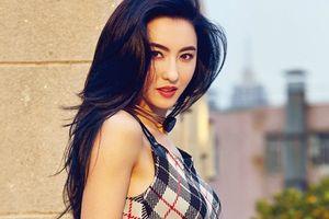 Trương Bá Chi bí mật sinh con cho triệu phú 65 tuổi, cả Cbiz choáng váng