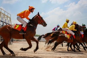 Hà Nội muốn xây trường đua ngựa 420 triệu USD ở Sóc Sơn