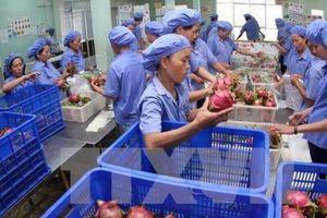11 tháng, xuất khẩu nông, lâm, thủy sản tăng hơn 9%