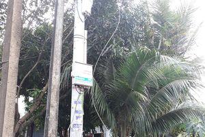Bị dây điện hạ thế mắc vào cổ, người đàn ông tử nạn: Điện lực Quảng Nam lên tiếng