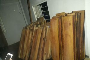Theo dõi xe ô tô vận chuyển gỗ, lòi ra hàng chục phách gỗ cất trữ trong nhà máy thủy điện