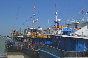 Triển khai Nghị định 67 ở Hà Tĩnh: Khó thu hồi nợ