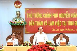 Thủ tướng: Gia Lai cần đẩy mạnh trồng rừng