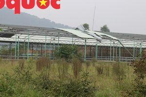 Tan hoang ở 'siêu dự án' 4.500 tỷ đồng khiến ông Trần Bắc Hà vướng vòng lao lý