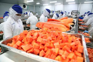 Xuất khẩu rau quả sang Trung Quốc giảm đà tăng trưởng