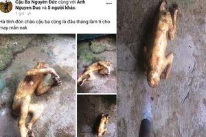 Nam thanh niên Hà Tĩnh khoe ảnh giết khỉ trên Facebook gây bức xúc