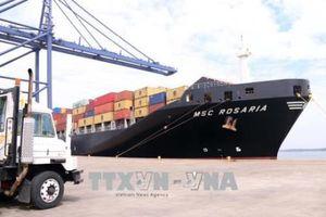 Giá dịch vụ tại cảng biển tăng 10% từ ngày 1/1/2019