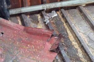 Người dân 'kêu cứu' vì bị ném mắm tôm vào nhà sau khi tố cáo sai phạm