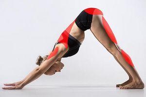 Nếu bạn muốn thay đổi cơ thể, hãy tập 15 bài tập yoga này