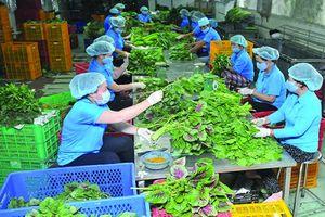 Nông nghiệp thông minh trong kỷ nguyên kinh tế số