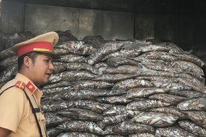 Phát hiện xe tải chở hơn 3 tấn cá bốc mùi