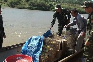 Cụ ông 72 tuổi chở gần 300 kg pháo lậu từ Lào về Việt Nam