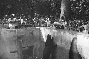 Ảnh độc về Thảo Cầm Viên Sài Gòn năm 1970