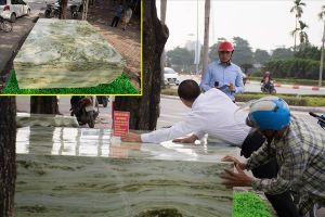 Mãn nhãn ngắm phiến ngọc khổng lồ nặng 16 tấn có giá 2,6 tỉ đồng