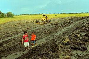 Nguy cơ suy thoái tài nguyên đất ở Đồng bằng sông Cửu Long