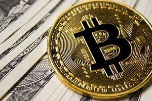 Thị trường tiền số 'bốc hơi' 70 tỷ USD vốn hóa trong tháng 11