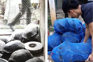Quảng Bình: Bắt giữ xe tải chở động vật hoang dã với số lượng lớn