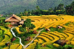 Chuyên gia Thụy Sĩ: 'Việt Nam đang là điểm đến ao ước của nhiều du khách quốc tế'