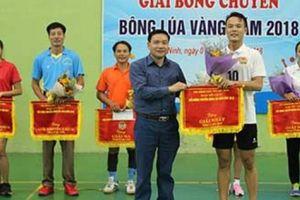 Bắc Ninh: 8 đội tranh tài giải bóng chuyền 'Bông lúa Vàng'