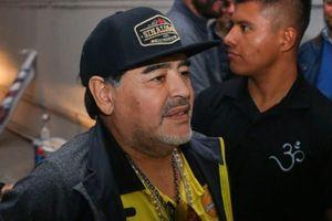 Huyền thoại Maradona nổi điên đấm cả phóng viên
