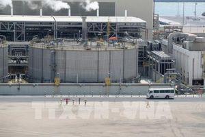 Những lo ngại của giới đầu tư khi Qatar rút khỏi OPEC