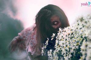 'Zombie' xâm chiếm vườn cúc họa mi, kể từ đó không còn thấy ai 'check in' với cúc họa mi nữa!