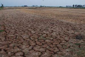 Quảng Trị: Hạn hán kéo dài đe dọa đến đời sống sản xuất, sinh hoạt của người dân