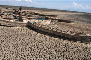 World Bank rót 200 tỷ USD chống biến đổi khí hậu