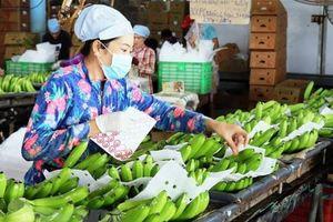 Đẩy mạnh chế biến để tạo đột phá cho xuất khẩu rau quả