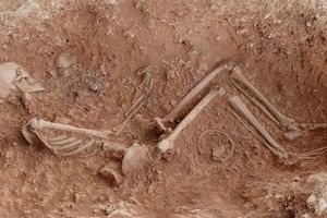 Anh vừa tìm thấy hài cốt 'mẹ ôm con' 1.500 năm tuổi