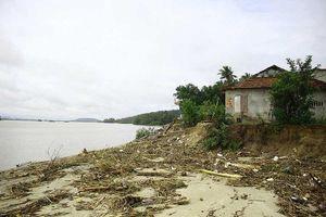 4 khu vực sạt lở bờ biển ở Quảng Ngãi cần khắc phục khẩn
