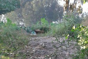 TPHCM: Nam thanh niên mặc áo tài xế GabBike nghi bị sát hại