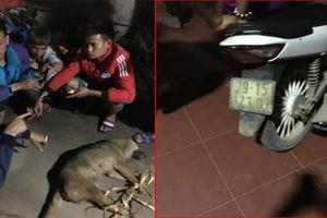 Đánh bả trộm chó, 3 'cẩu tặc' bị dân phục kích bắt giữ