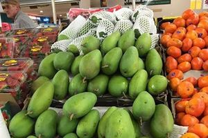 Trái cây quý Việt Nam xuất ngoại chinh phục thị trường cao cấp