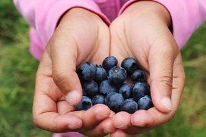 5 loại thực phẩm giúp 'trị' ung thư