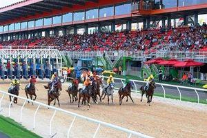 Hà Nội xây dựng tổ hợp vui chơi giải trí đa năng- Trường đua ngựa