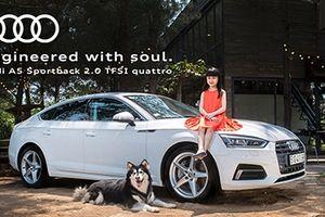 Thu hồi hàng trăm xe Audi vì lỗi túi khí