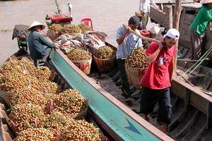 Xuất khẩu rau quả: Mục tiêu 10 tỷ USD vào 2025 ngày càng xa