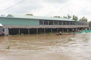 Có nên xây chợ lấn sông?
