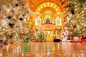 Ngắm những công trình 'cây Giáng sinh khổng lồ' ấn tượng nhất nước Mỹ