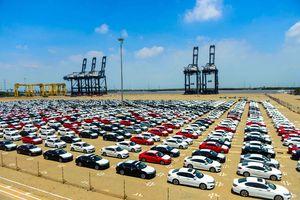 Trái với kêu than, xe nhập khẩu vẫn về nhiều