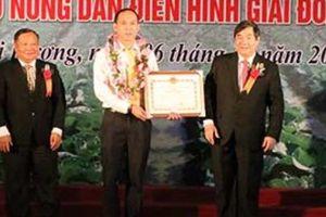 Hải Dương vinh danh 101 nông dân tiên tiến, thu nhập tiền tỷ